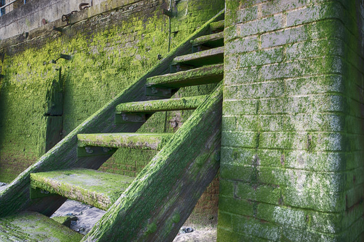 Photograph of Steps to River Thames