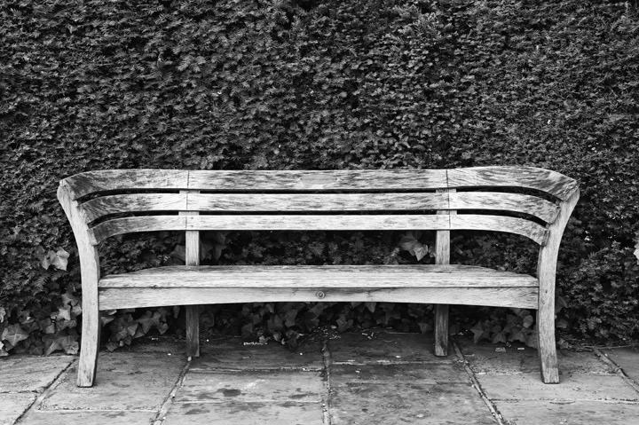 Photograph of The Bench - Regents Park