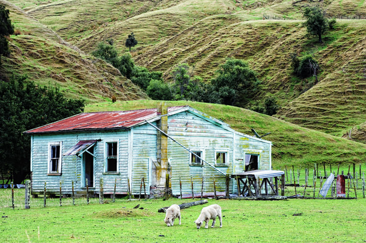 The Green Farmhouse New Zealand
