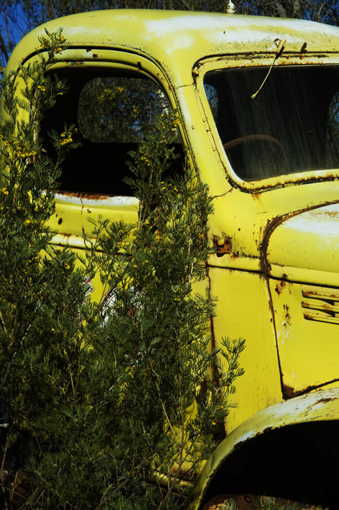 Photograph of The Old Yellow Truck