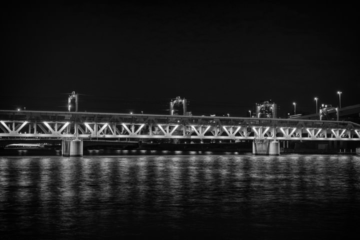 Photograph of Tobu Bridge 1