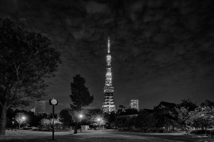 Photograph of Tokyo Tower 4