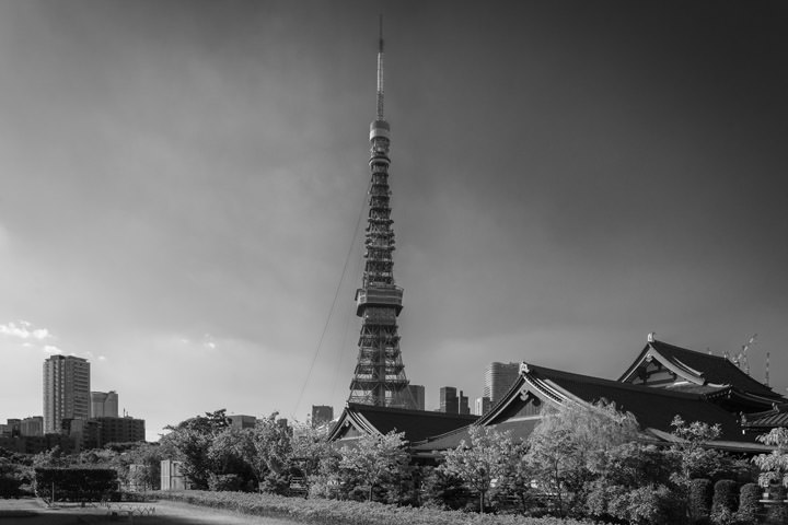 Photograph of Tokyo Tower 7