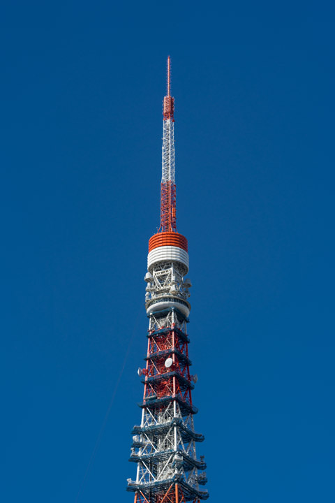Photograph of Tokyo Tower 8