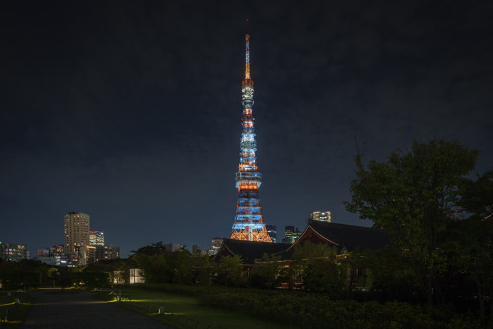 Photograph of Tokyo Tower 9