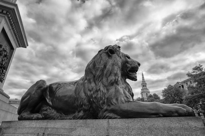 Photograph of Trafalgar Square Lion 1