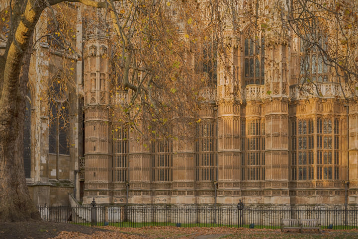 Photograph of Westminster Abbey 18