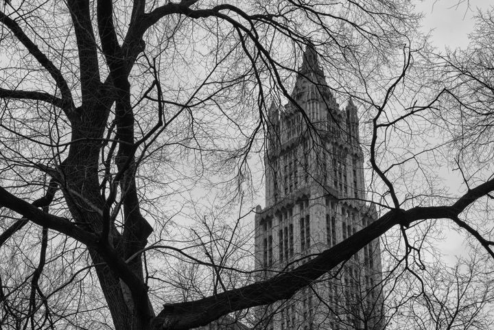 Photograph of Woolworth Building 12