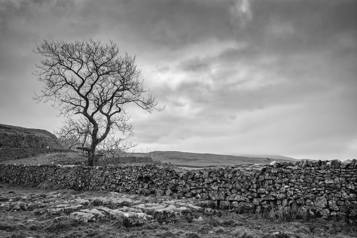 Yorkshire Dales 1