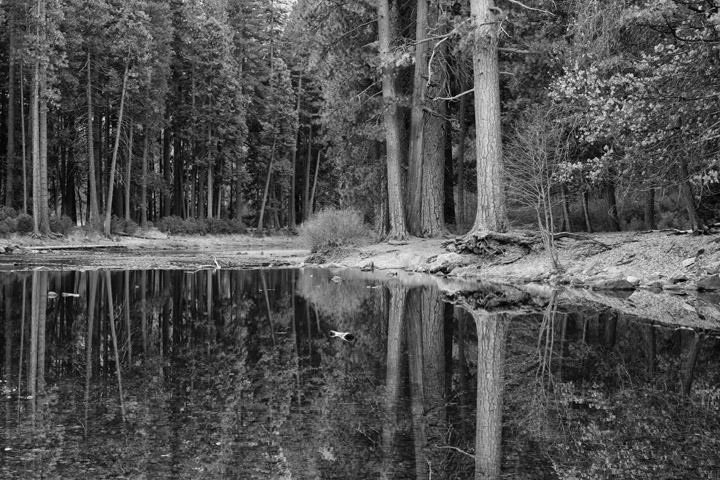 Yosemite Reflections 3