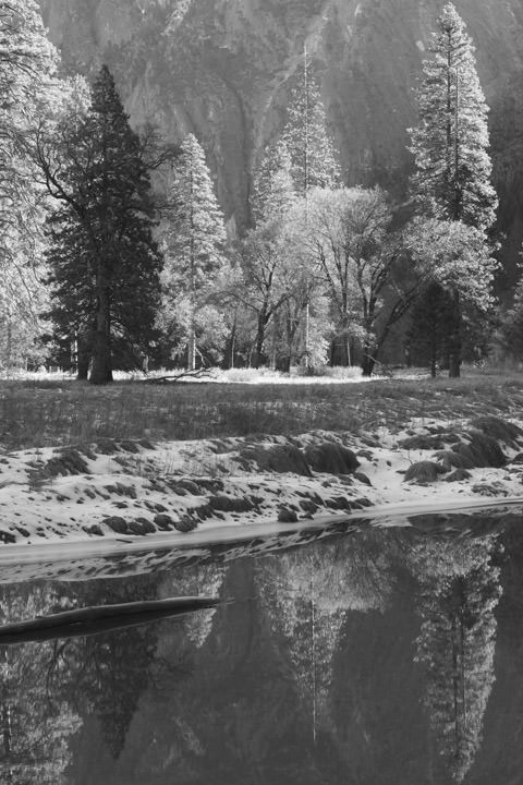 Yosemite Reflections 7
